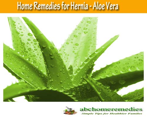 Aloe Vera Home Remedies for Hernia