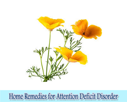 California Poppy : Home Remedies for Attention Deficit Disorder