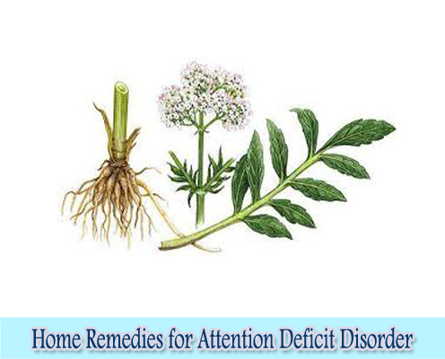 Valerian : Home Remedies for Attention Deficit Disorder