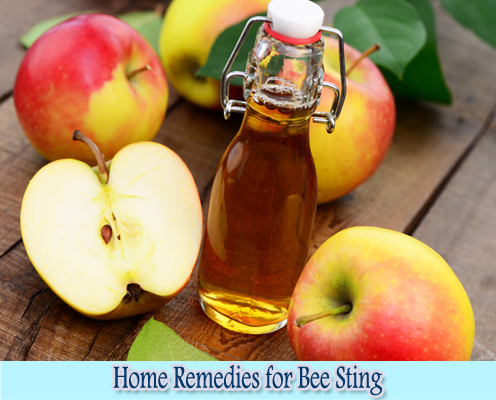 Apple Cider Vinegar : Home Remedies for Bee Sting