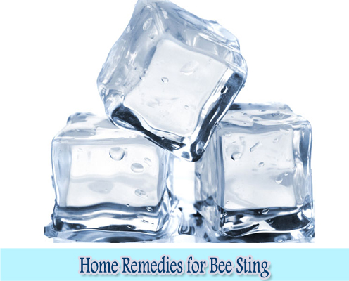Ice Cube : Home Remedies for Bee Sting