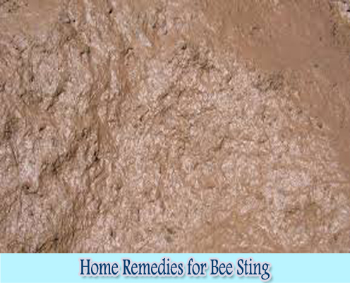 Mud : Home Remedies for Bee Sting