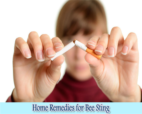 Tobacco : Home Remedies for Bee Sting