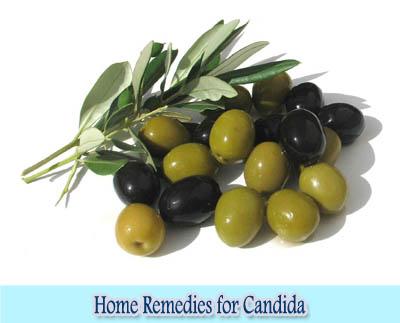 Olive Leaf : Home Remedies for Candida