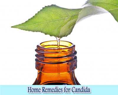 Tea Tree Oil : Home Remedies for Candida