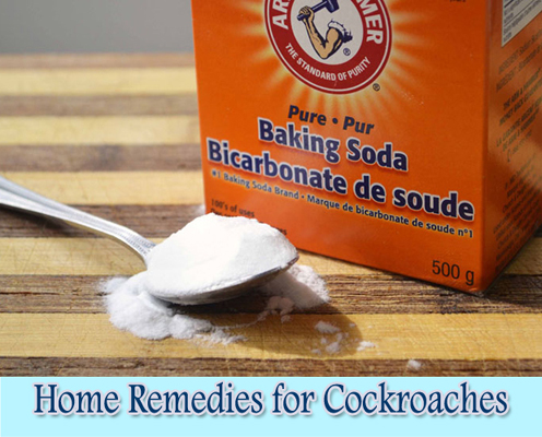 Baking Soda : Home Remedies for Cockroaches