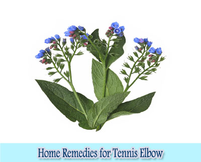 Comfrey Leaves : Home Remedies for Tennis Elbow