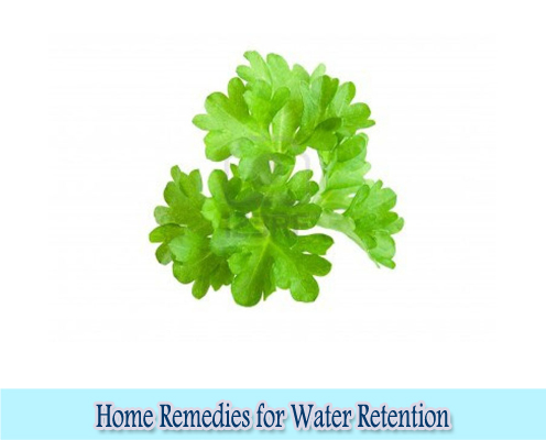 Parsley leaves : Home Remedies for Water Retention